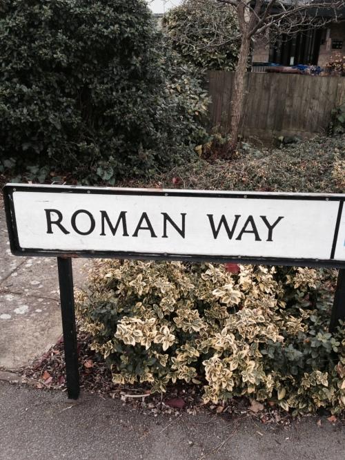 Elegir nombre dominio Roman